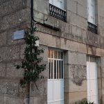 Furancho-De-Pepita