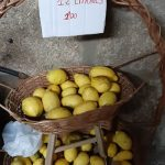 Limons-Furancho-De-Pepita